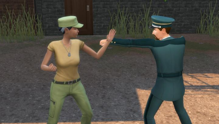 Sims in the Military can Spar