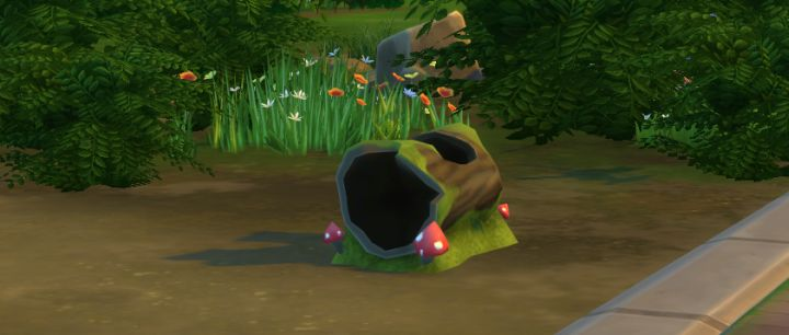 Collect Frogs from Logs in The Sims 4