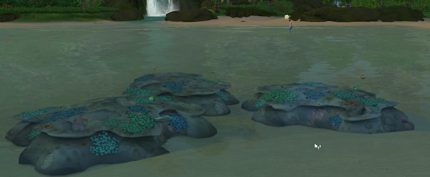 There is hardly any coral growing in this area in The Sims 4 Island Living Expansion Pack