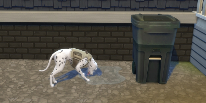 Sims  Cats And Dogs Dog Need Menu