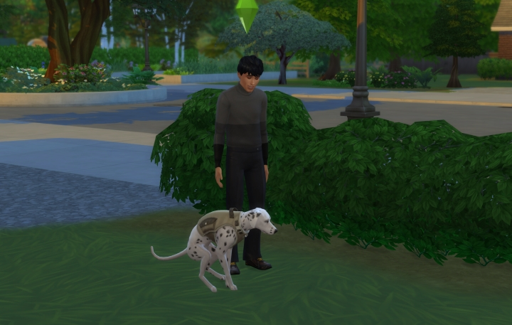 Teaching a dog to go outside (housebreaking) in the Sims 4 Cats and Dogs Pets Expansion