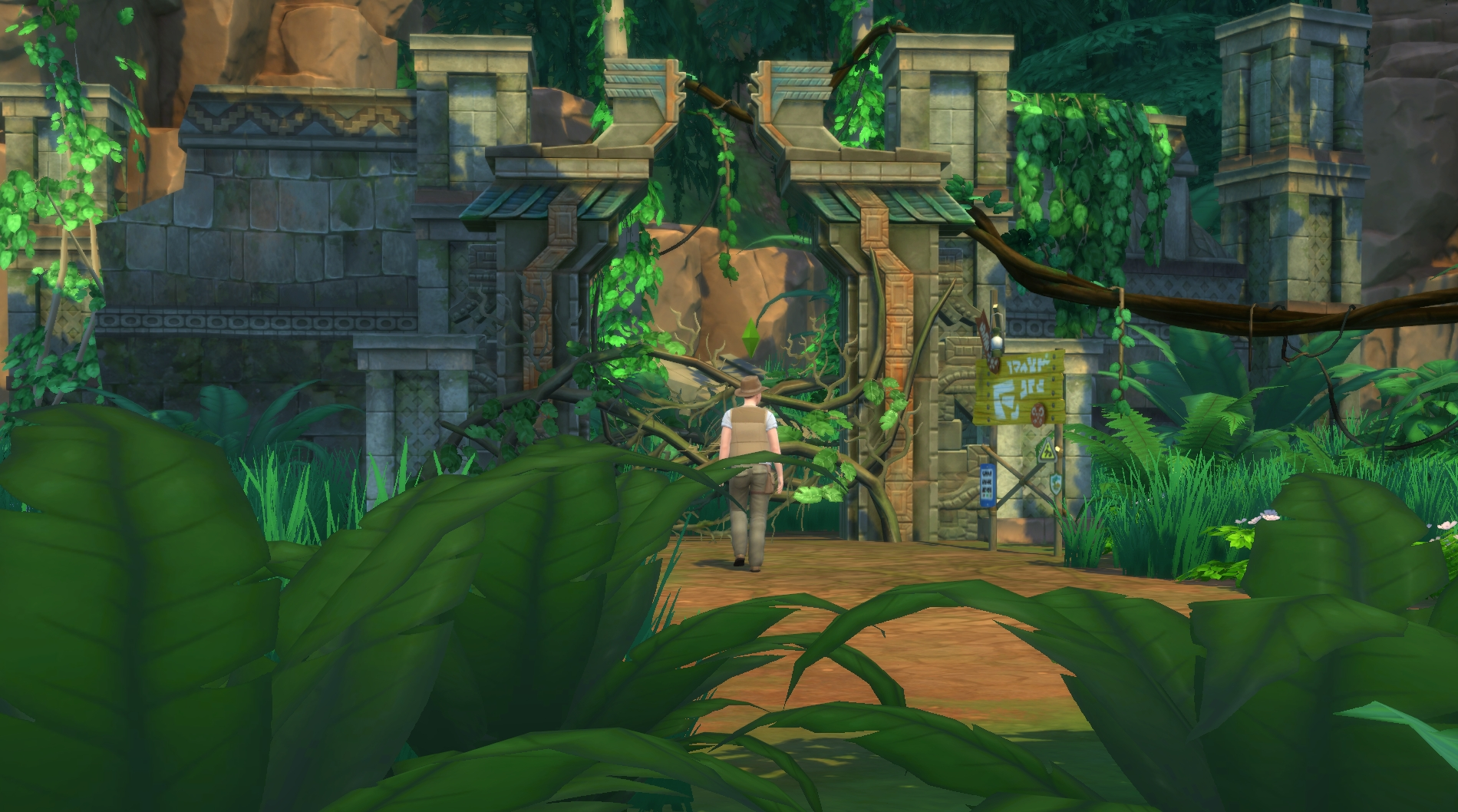 Forest Adventure Island Cam Highdefinition