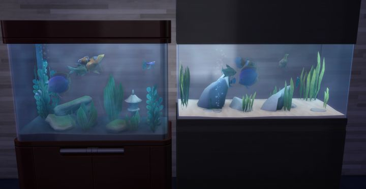 Aquariums in the Spa Day Game Pack