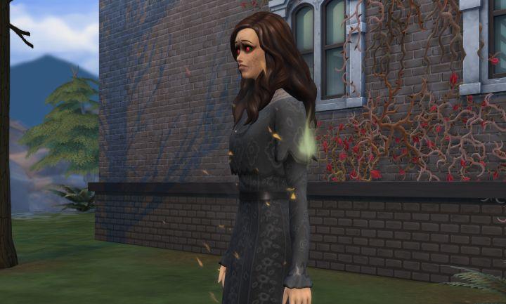 Sims  Elder Vampire Birthday Cake