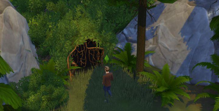 Outdoor Retreat Secret Area: Deep Woods