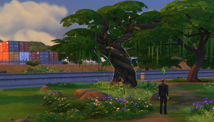 This Tree will let you into Sylvan Glade