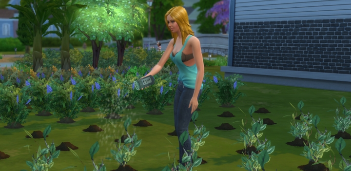 The Sims 4 Fertilizer