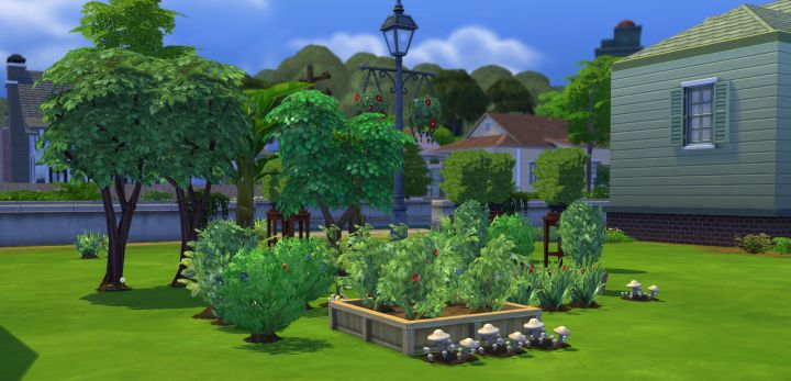The Sims 48 Gardening Skill Plant Grafting Combos Enchanting Garden Design Games Collection