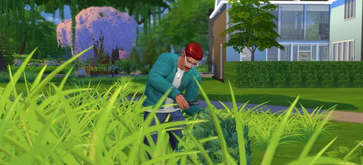 The Sims 4 Take Cutting and Graft are useful abilities for completing a garden collection