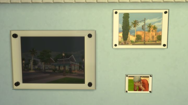 The Sims 4 Photography (Get to Work Skill)
