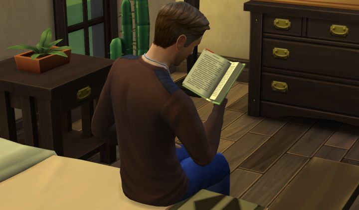 The Sims 4 Read for Reference